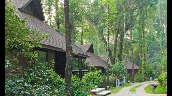 tamara resort coorg